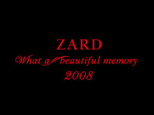 ZARDな日々〜beautiful memory in 札幌