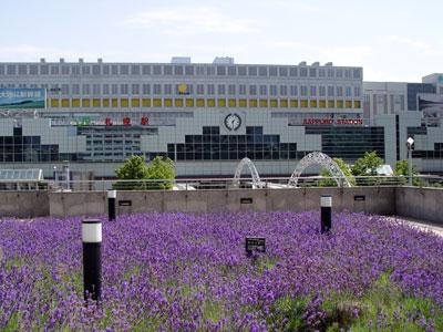 さようなら札幌、そして、ありがとう北海道!