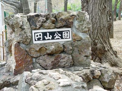 円山公園で、桜・お花見・ジンギスカン!