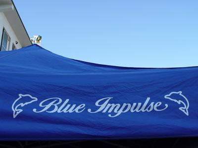 2009航空祭2〜ブルーが飛んだ日